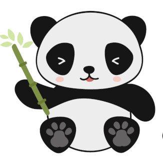 illu2_Panda_color_curiokids