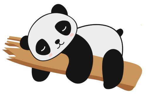 illu4_Panda_color_curiokids
