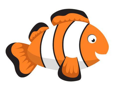 illu_fish_clown_curiokids