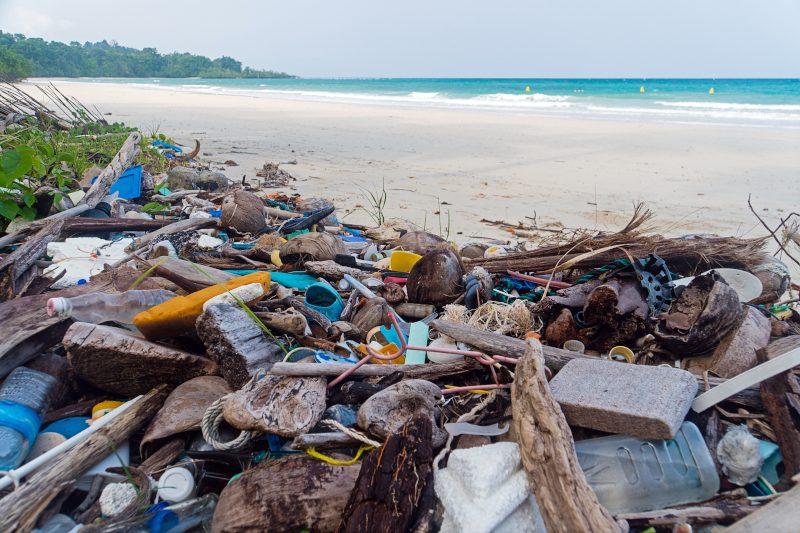 plage polluée_curiokids